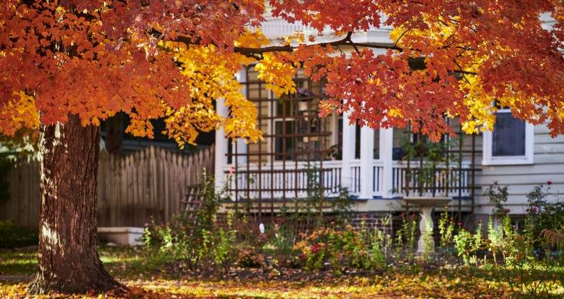 Here's Why You Should Buy a House During the Fall Season